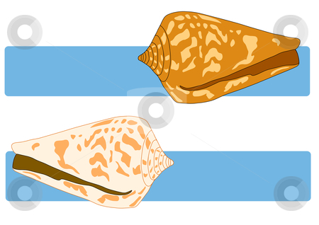 Sea Shells on Blue stock vector clipart, Vector Illustration of sea shells over blue title banners. by Robert Gebbie