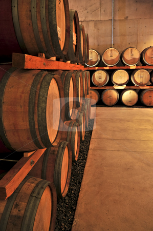 Wine barrels stock photo, Stacked oak wine barrels in winery cellar by Elena Elisseeva
