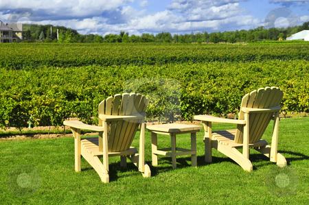 Chairs overlooking vineyard stock photo, Muskoka chairs and table near vineyard at winery by Elena Elisseeva