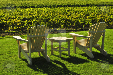 Chairs overlooking vineyard stock photo, Muskoka chairs and table near vineyard at winery by Elena Elisseeva