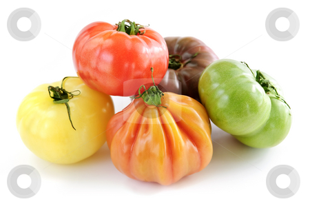 Heirloom tomatoes stock photo, Multi colored heirloom tomatoes isolated on white background by Elena Elisseeva