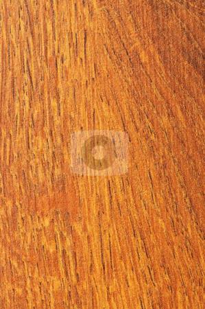 Pre-finished hardwood floor sample stock photo, Close up of prefinished hardwood flooring sample by Elena Elisseeva