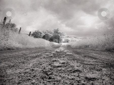 Infrared landscape stock photo, Black and white Infrared picture of a muddy countryside  road by Laurent Dambies