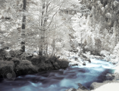 Infrared landscape stock photo, Infrared picture of a beautiful forest with river flowing orton processed by Laurent Dambies