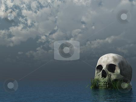 Skull stock photo, Skull rock at the ocean - 3d illustration by J?