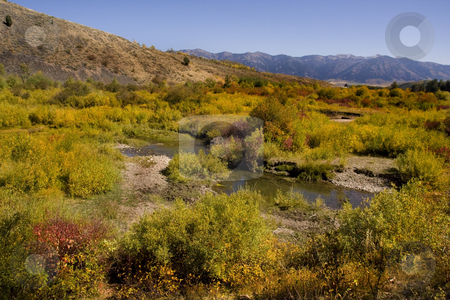 Fall Stream stock photo, Mountain Meadow showing all fall colors by Mark Smith