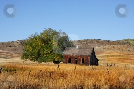 Americana stock photo, Deserted Farm with wheat grassand blue skys by Mark Smith