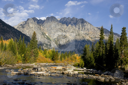 Grand Teton National Park stock photo, Mountain Stream  in Grand Teton National Park Showing fall cokors by Mark Smith
