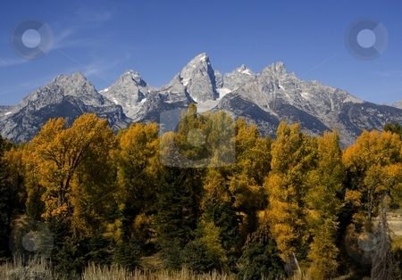 Grand Teton National Park stock photo, Grand Teton National Park with fall colorsand blue sky by Mark Smith