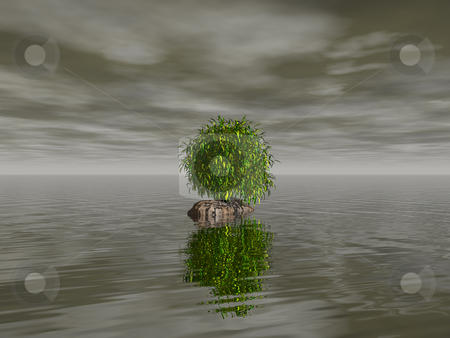 Tree stock photo, Lonely tree in dark water landscape - 3d illustration by J?
