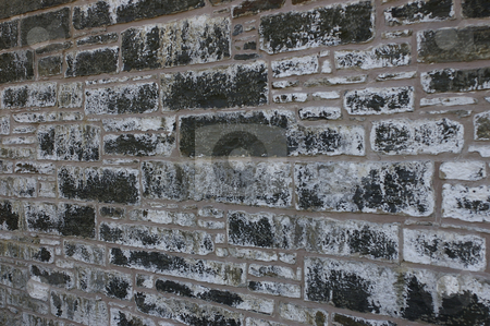 Stone Wall stock photo, A closeup of an old stone and concrete or cement wall that has been well weathered. by Tom Weatherhead