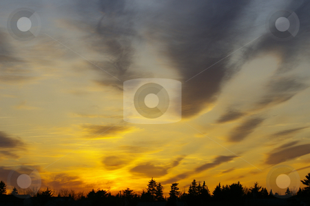 Sunset stock photo, A colourful sunset with trees on the horizon by Tom Weatherhead