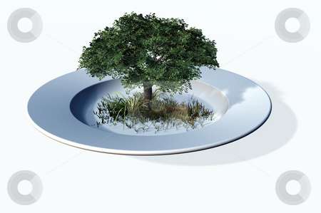 Dinner plate stock photo, White Plate and tree on white background - 3d illustration by J?