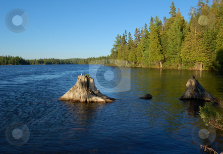 Lake stock photo, Sunny evening after day of canoeing in Algonquin Park by Pavel Cheiko