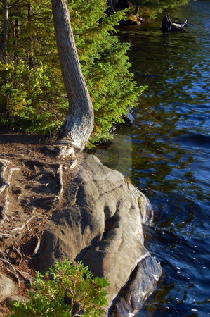 Sunny evening stock photo, Sunny evening after day of canoeing in Algonquin Park by Pavel Cheiko
