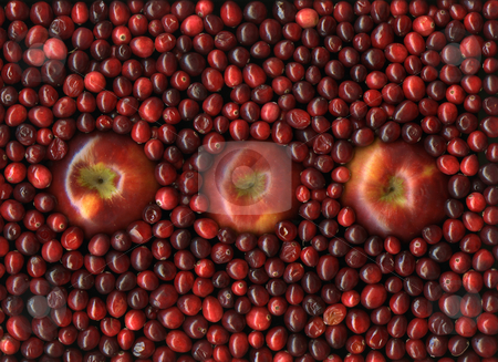 Cranapple stock photo, Fresh organic apples with vibrant red cranberries by Christian Slanec