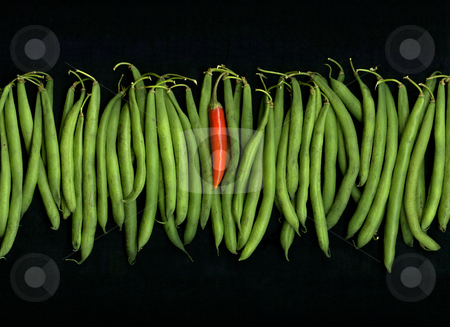 Thai N' String stock photo, Organic string-beans and single hot red chili pepper isolated on black background by Christian Slanec