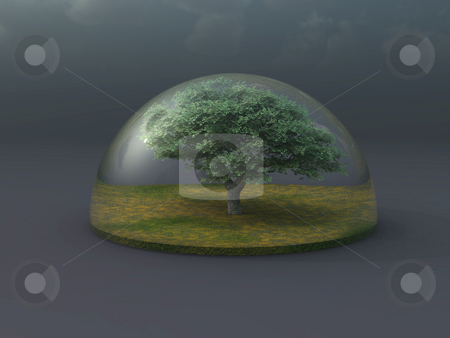 Prtotect stock photo, Tree under a glass dome - 3d illustration by J?