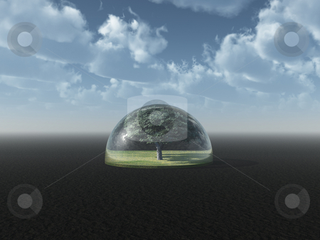 Protection stock photo, Tree under a glass dome - 3d illustration by J?