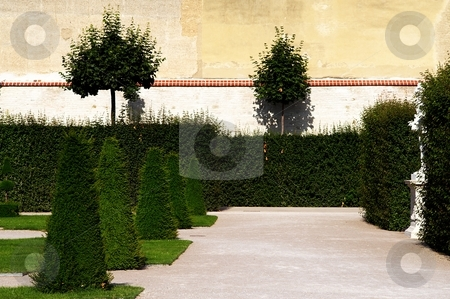 Quite park garden stock photo, Detail of decorative park garden with bushes and trees by Juraj Kovacik