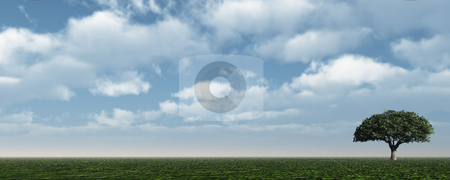 Lonely stock photo, Lonely tree at green field - 3d illustration by J?