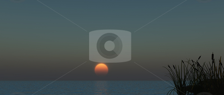 Sunset stock photo, Reed at water - 3d illustration banner by J?