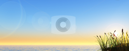 Reet stock photo, Reed at water - 3d illustration banner by J?