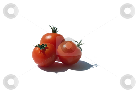 Tomatos stock photo, Three tomatoes  isolated on a white background by Jesper Klausen