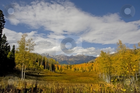 Fall Colors stock photo, Mountain meadow showing fall colors with mountains in the background by Mark Smith