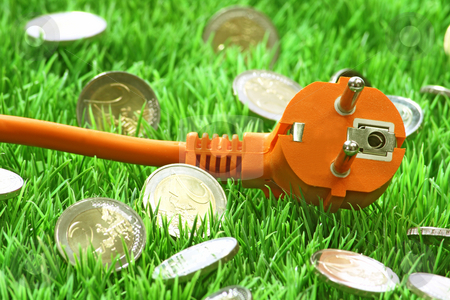 Power connector stock photo, Power connector with euro coins on a grass meadow as background by Birgit Reitz-Hofmann