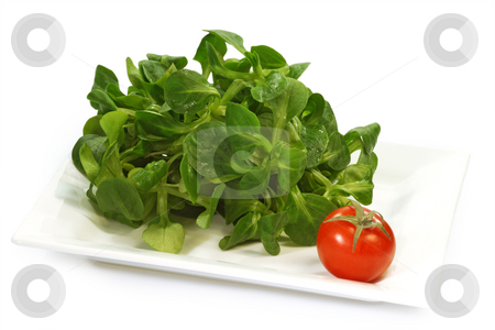 Field salad stock photo, Field salad on a plate on white background by Birgit Reitz-Hofmann