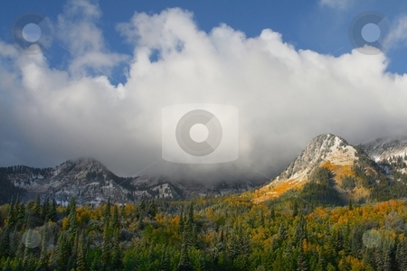 Fall Snow Storm 2 stock photo, Fall Snow Storm In the Rocky  Mountains by Mark Smith