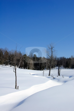 Winter scene stock photo, Winter landscape with a bright blue sky by Alain Turgeon