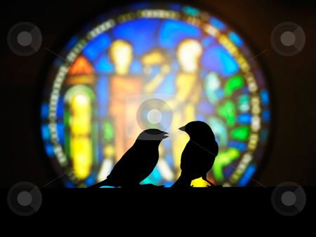 Admonish stock photo, Sparrow small talk in front of the church colorful window by Lawren