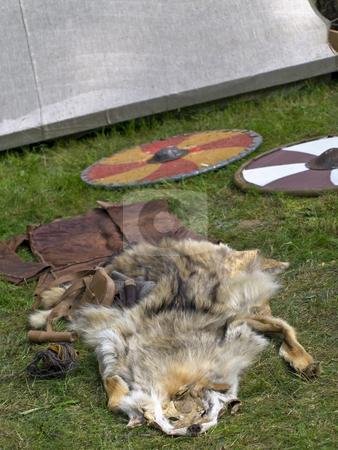Wolf fell stock photo, Wolf fell and shields on the green grass by Sergej Razvodovskij