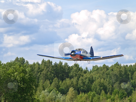 Landing stock photo, Airplane landing against the cloudy sky and forest by Sergej Razvodovskij