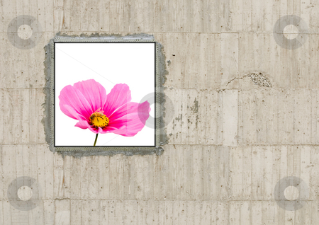 Blank canvas on concrete wall stock photo, Blank canvas on concrete wall by Lawren