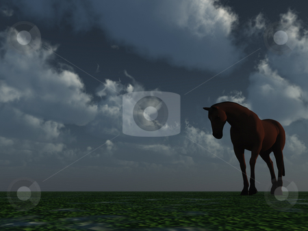 Horse stock photo, A horse at night against cloudy sky - 3d illustration by J?