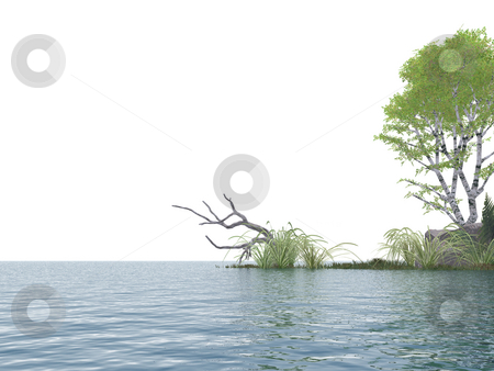 Birch stock photo, Isolated water landscape with tree  - 3d illustration by J?