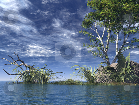 Coast stock photo, Water landscape with tree  - 3d illustration by J?