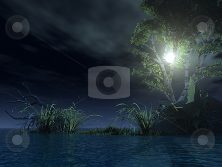 At night stock photo, Water landscape with tree at night - 3d illustration by J?