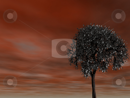 Red sky stock photo, Lonely tree and red sky - 3d illustration by J?
