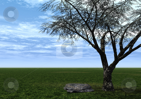 Tree and stone stock photo, A tree and a stone on a green field and blue sky by J?