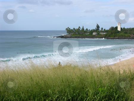 Waimea Bay, Oahu, Hawaii stock photo, Surfers at Waimea Bay, North Shore, Oahu, Hawaii by William Perry