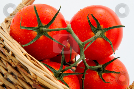 Tomatoes In A Wicker Basket stock photo, Close-up of ripe red tomatoes still on the vine with a light background by Lynn Bendickson