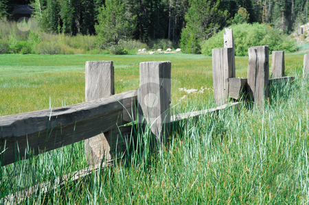 Split Rail Fence stock photo, Old fence creating a barrier to a green meadow in the forest by Lynn Bendickson