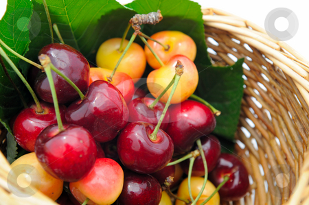 Ripe Cherry stock photo, Bing and Rainier cherries in a small wicker basket ready to eat. by Lynn Bendickson