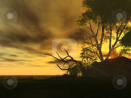 Sunrise stock photo, Natural sunset landscape with tree silhouette - 3d illustration by J?