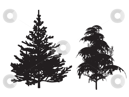 Trees stock photo, Silhouette  trees by J?