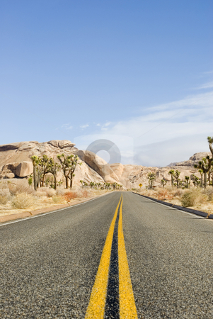 Joshua tree national park stock photo, A road desert through the joshua tree national park, california by Stephen Gibson